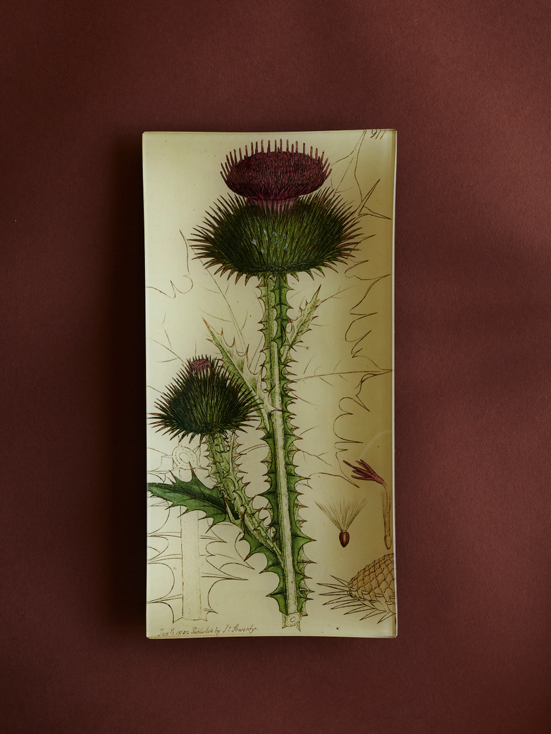 Thistle Pencil Tray