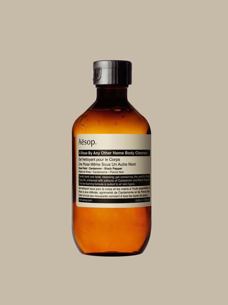 XIII. AESOP - Rengöring